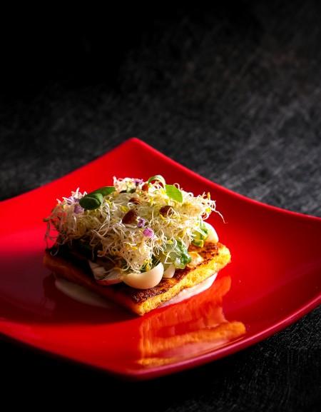 料理|真鯛のバジル風味とパンぺルデュのガトー仕立て フムスとシャンピニオンのラメル